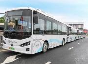 深汕区纯电动巴士投入运营 首批8条线路公布