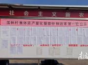 """陆丰高美村:股份合作制改革让荒山变""""金山"""""""