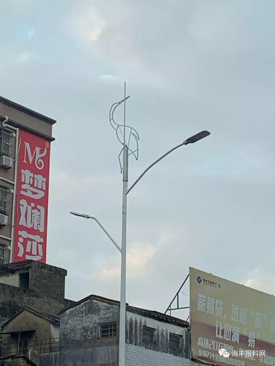 海丰县城二环路的路灯换新了 海丰新闻 第6张