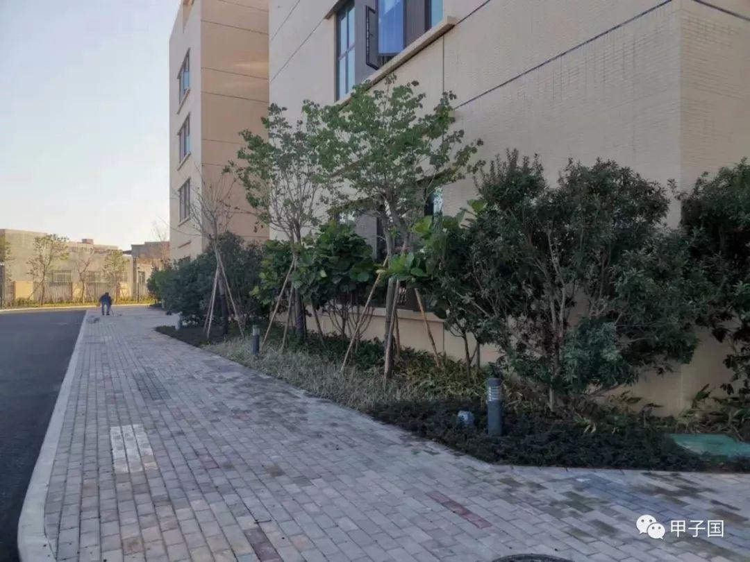 陆丰市第二人民医院(甲子人民院)即将完工 陆丰新闻 第9张