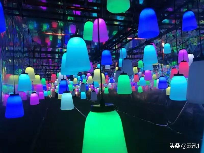 陆河世外梅园艺术灯光秀梅花节 陆河新闻 第1张