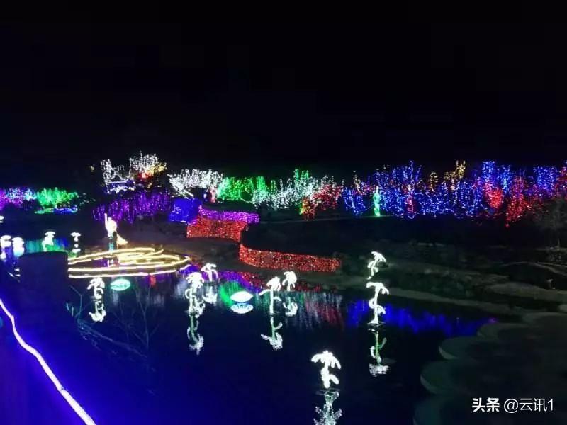 陆河世外梅园艺术灯光秀梅花节 陆河新闻 第3张