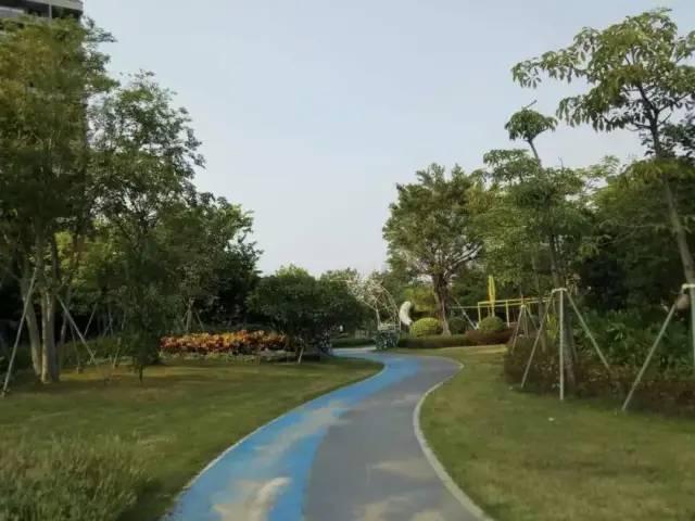 离汕尾市区最近的湿地公园:雅居乐山海郡湿地公园 汕尾 第3张