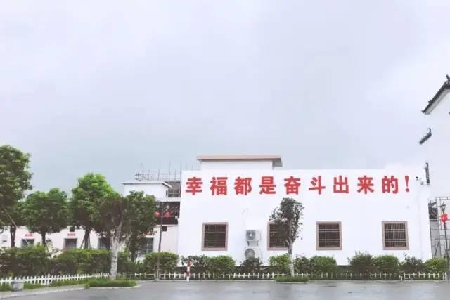 红色印记 ︳海丰新山村 海丰新闻 第8张