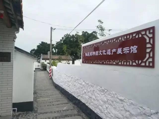 红色印记 ︳海丰新山村 海丰新闻 第12张