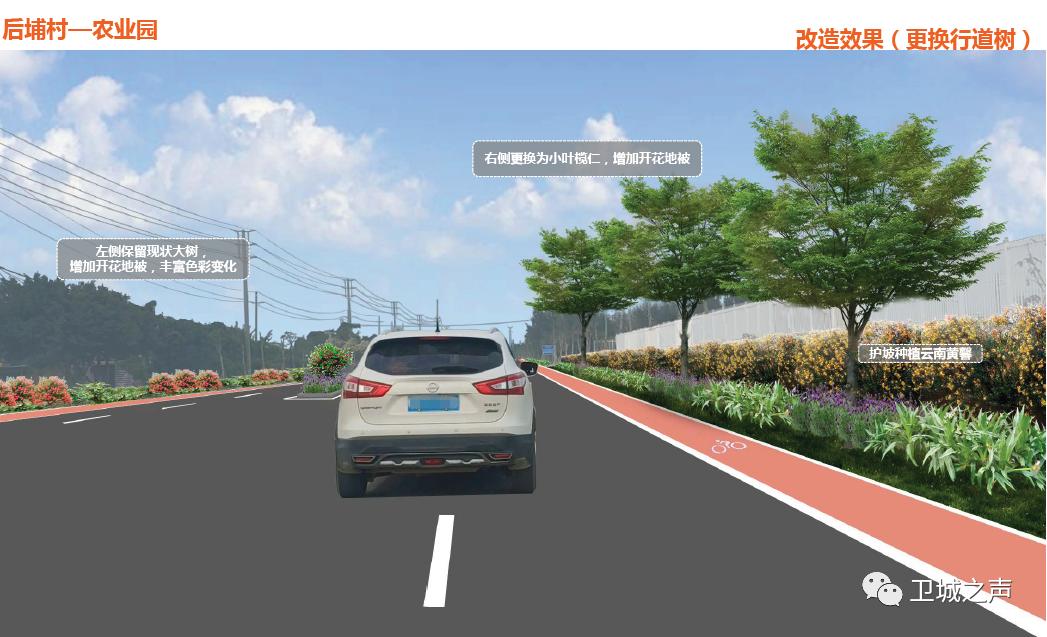 陆丰市碣石镇计划进行改造 陆丰新闻 第47张