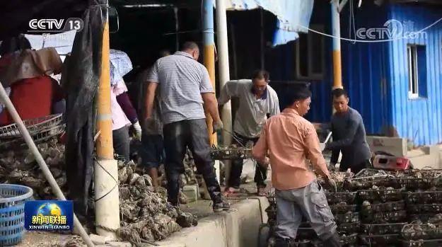 《新闻联播》:汕尾依托红色资源 推动老区乡村振兴 汕尾新闻 第4张