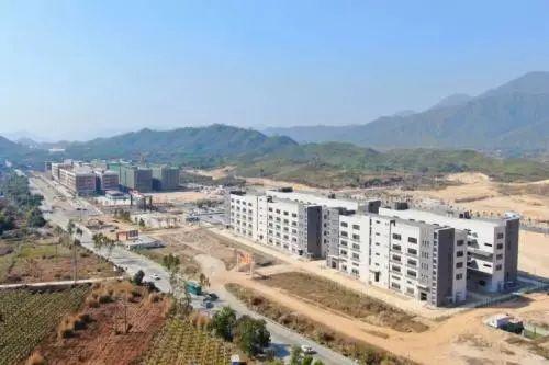 海丰总部经济业态蓬勃发展 海丰新闻 第4张